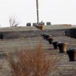 snowy-owl-watch-11-25-11-029-juvie-male-snowy-owl