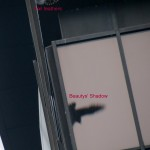 img_0743-beautys-shadow-on-ocsr