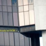 5-beauty-on-ocsr
