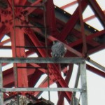 Beauty on the Frontier Communication Tower - 2/23/13