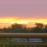 img_8377-sunrise