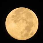 img_0001-blue-moon-to-start-my-day
