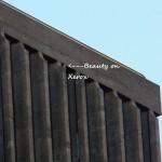 Beauty on South Side of Xerox 9-18-13