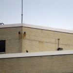 img_0038-juvie-likes-this-spot-on-he-roof