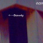 Beauty in the OCSR Elevator Shaft 11-21-13