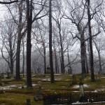 Mt Hope Cemetery 12-22-13