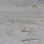 Sparkly Snow 12-25-13