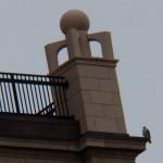 Dot.ca on Kodak Office Tower 1-12-14