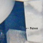 Falcon in the OCSR Elevator Shaft 1-7-14