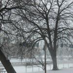 Cold, Snow & Wind 1-7-14