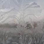 Frost Art 1-29-14