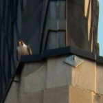 14-dotca-on-nw-wing-ledge-tsb-5-27-14