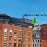 31-where-i-found-nettie-6-30-14