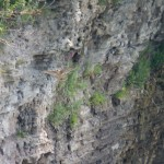 17-flying-in-the-gorge-7-26-14