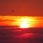 img_0003-sunrise