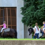img_0129-horse-riding-at-federal-building