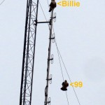 img_0015-billie-and-99