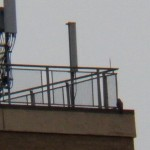Falcon at Seneca Towers 11-22-14