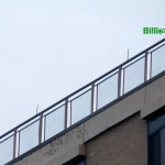 img_0001-billie-and-99
