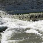 img_0091-little-falls