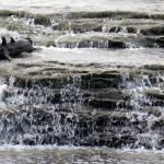 img_0067-mini-falls