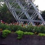 img_0075-martin-luther-king-jr-memorial-park