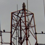 Beauty on Jail Communication Tower -12-26-15