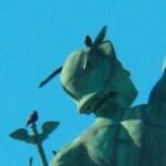 Starlings on Mercury -2-2-16