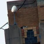 Syracuse Nest Box -4-6-16