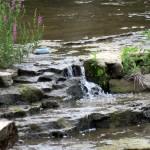 img_0004-genesee-river