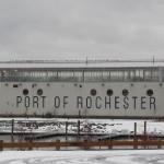 1-port-of-roch-pigeons-12-24-16