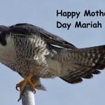 mariah-special-a