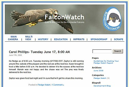 FalconWatch Blog Screenshot