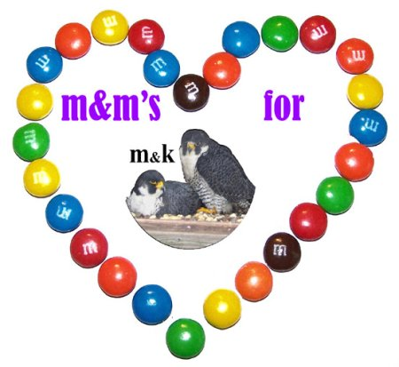 M&M's for M&K Heart Logo
