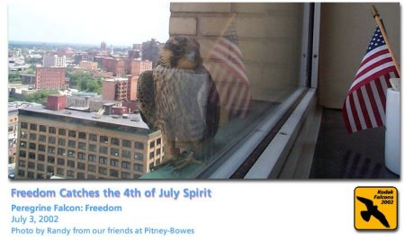 Freedom at Kodak on July 4 2002