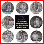 2014 RFalconcam Ornaments