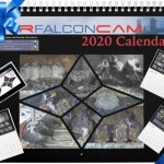 2020 Rfalconcam Calendar Ad